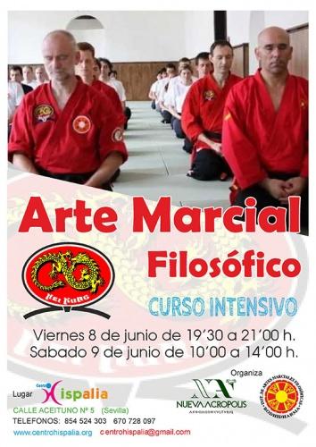CURSO INTENSIVO ARTES MARCIALES FILOSÓFICAS